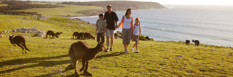 Kinderen En Kangaroos Reizen In Australie