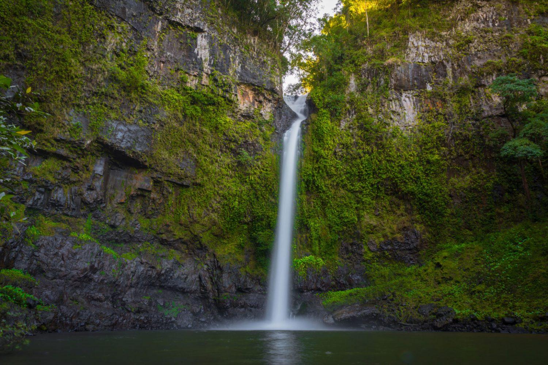Die Atherton Tablelands sind ein Wunderwerk der Natur. Es gibt viel zu entdecken in dieser faszinierenden tropischen Hochebene.