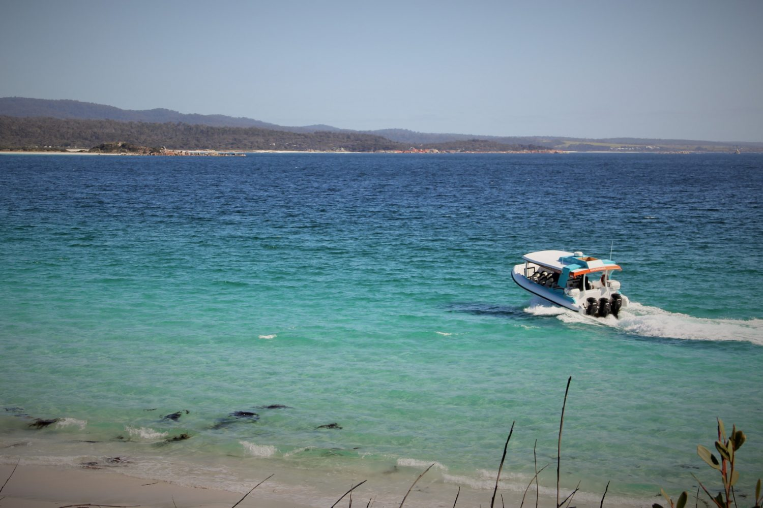 Bay of Fires Eco Tours