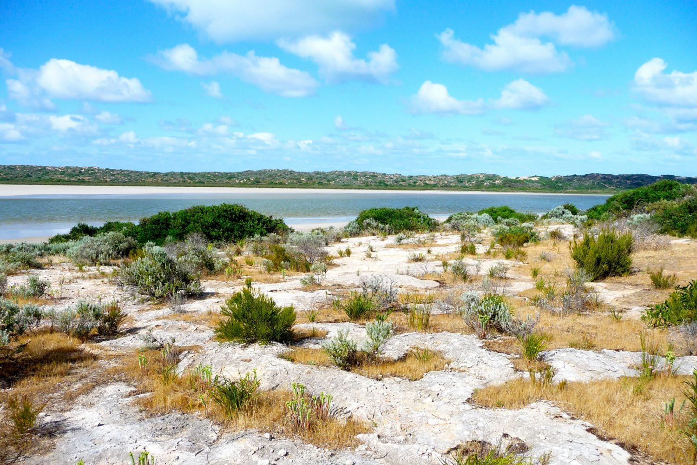 Coorong National Park in Südaustralien