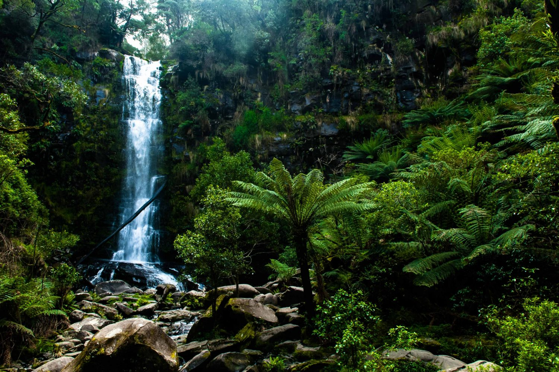 Great Ocean Road - Wasserfall im Otway Nationalpark