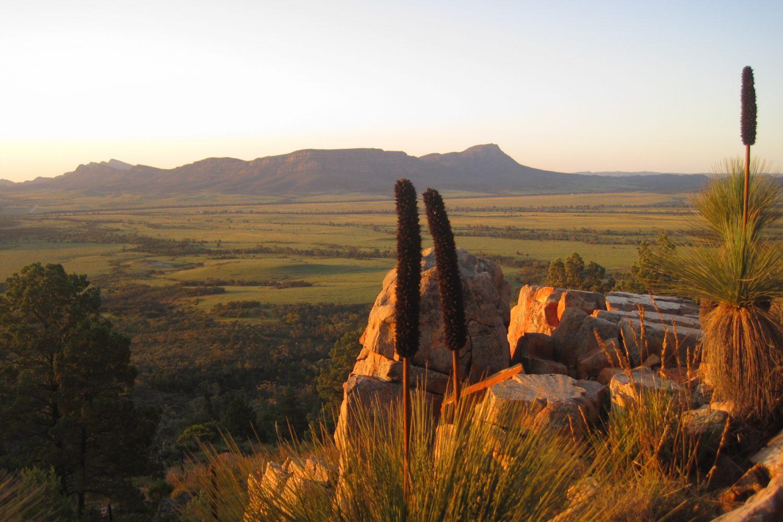 Flinders Ranges: Sonnenuntergang