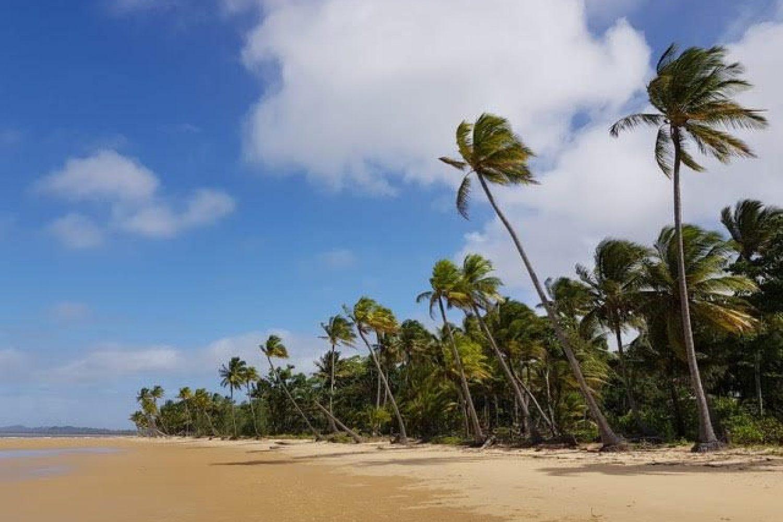 Palmengesäumte Strände im tropischen Queensland