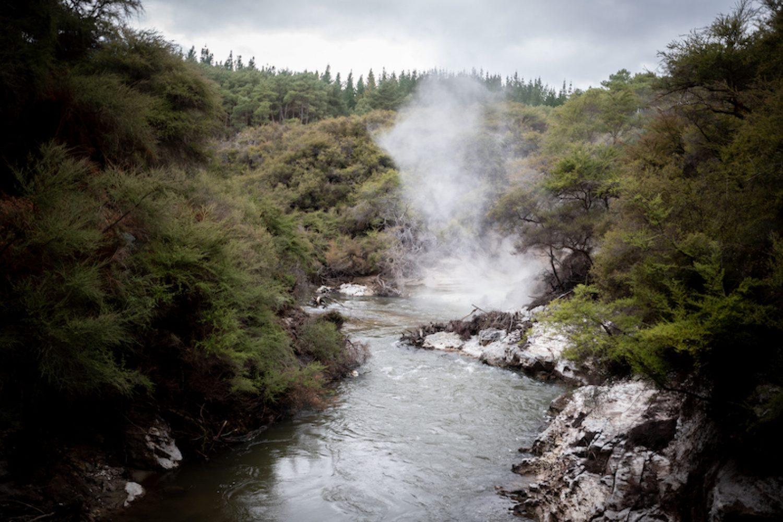Dampfender Kerosene Creek auf Neuseelands Nordinsel