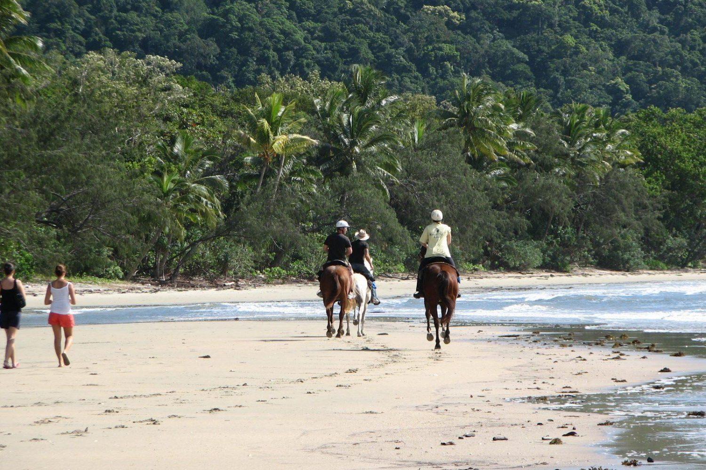 Paardrijden bij Cape Tribulation in Daintree National Park