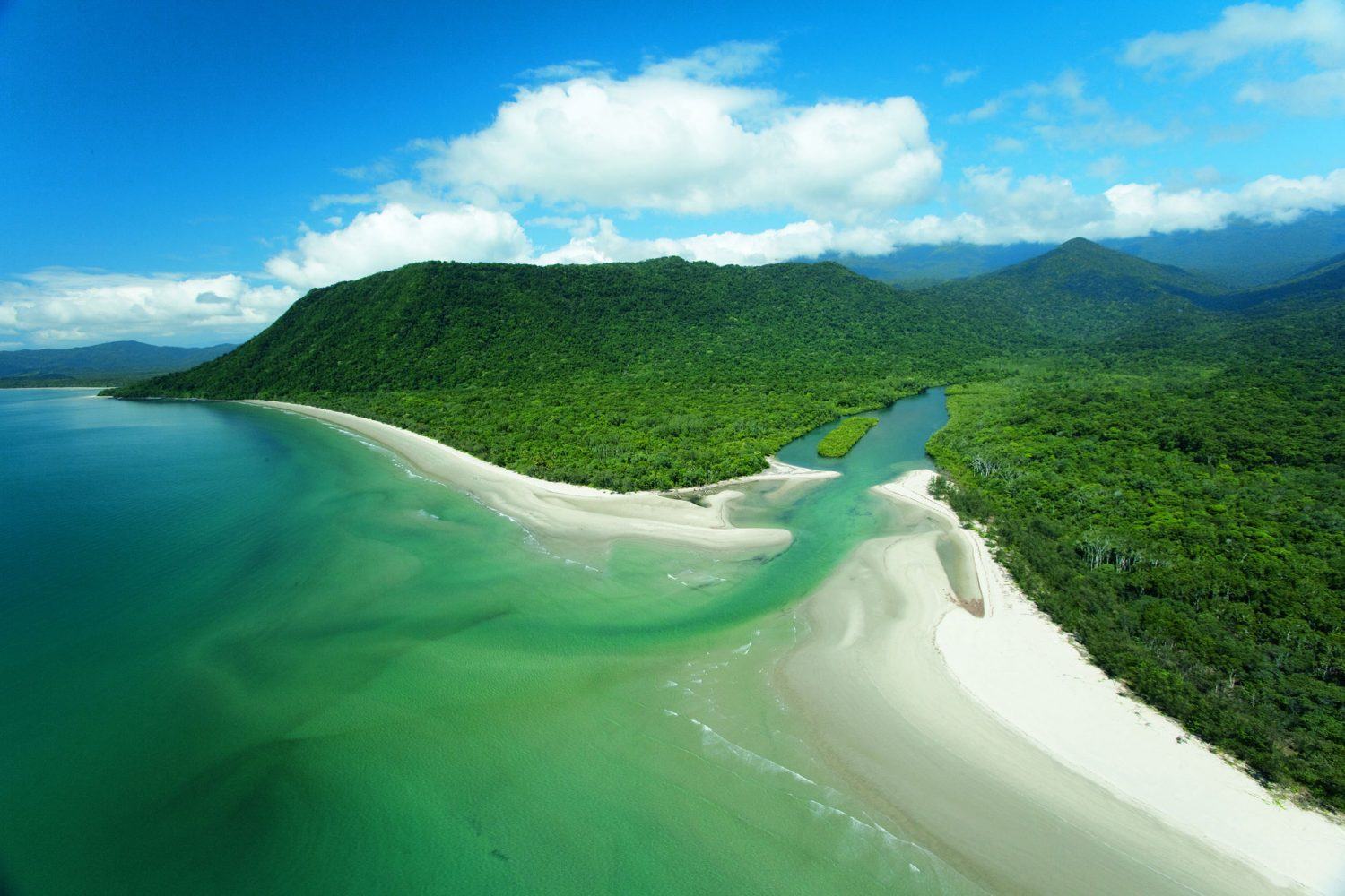 Het Daintree National Park in Tropical North Queensland