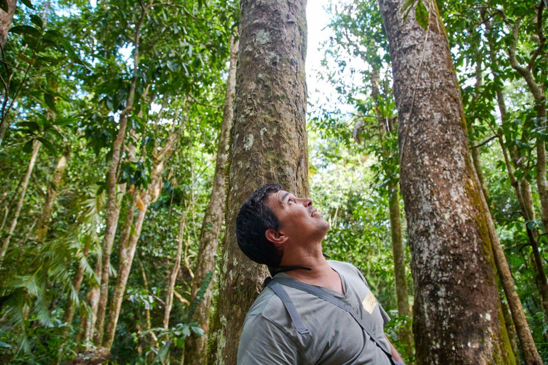 Juan erzählt während der Aborigine-Erlebnis Tour über die Kultur, Traditionen und Geschichte der Aborigines.