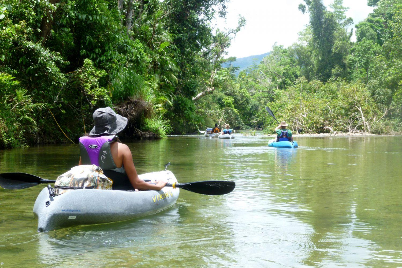 Paddeln Sie gemütlich flussabwärts des Bulgan Creek und sehen die Natur durch die Augen der Aborigines.