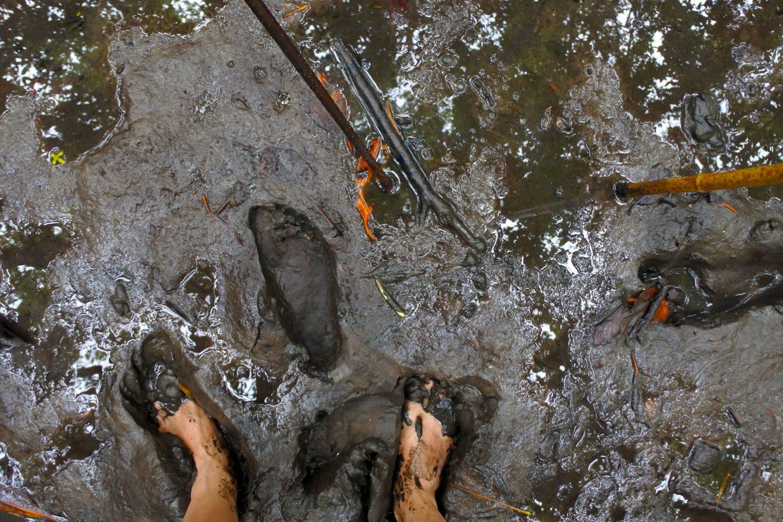 In de modder krabben vangen met een lokale Aboriginal gids