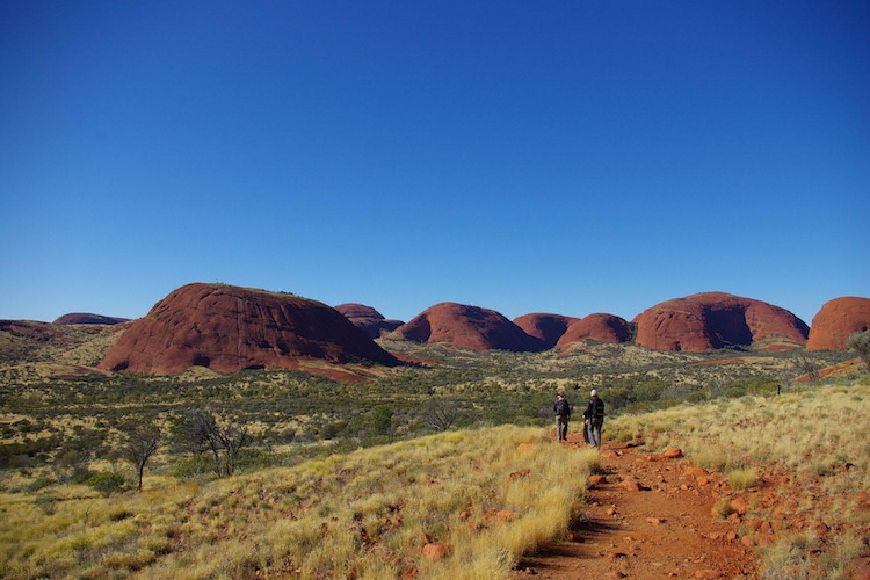 Safaritour im Roten Zentrum - Uluru