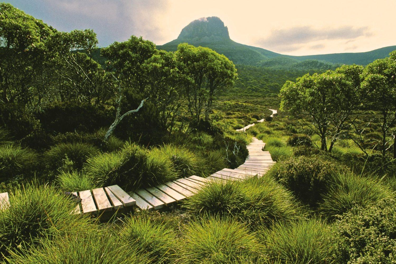 Cradle Mountain Hut Walk