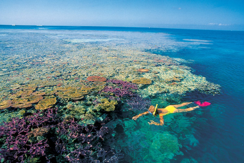 Een vrouw die aan het snorkelen is op het Great Barrier Reef in Australië