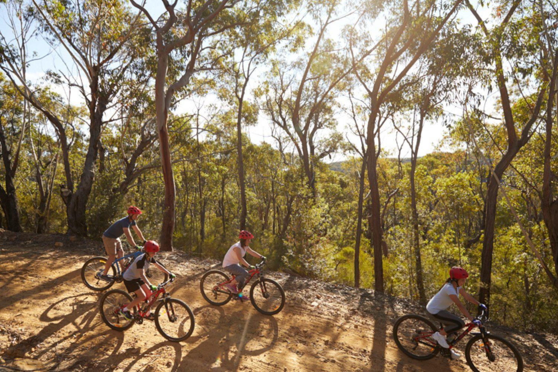Eine Mountain Bike Tour ist hervorragend, um die Blue Mountains zu erkunden.