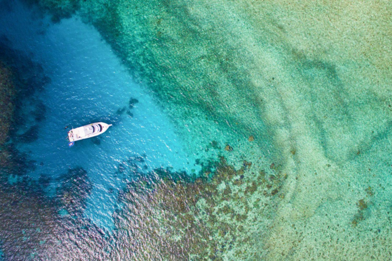 Mit unserem Partner erleben Sie das Great Barrier Reef in seinem natürlichen Zustand abseits der Massen in einer kleinen Gruppe. Dieses gigantische Naturwunder dürfen Sie natürlich nicht verpassen auf Ihrer Reise.