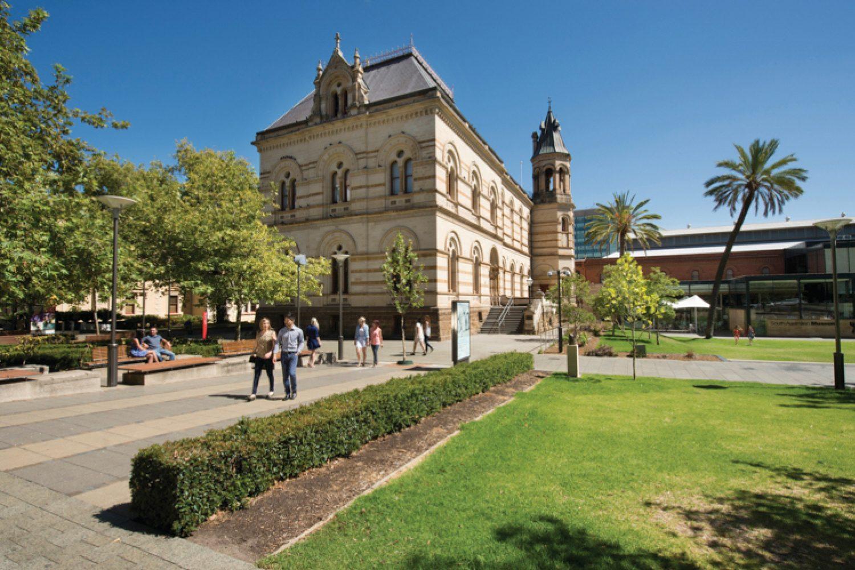 Einen fantastischen Einblick in die Kunst der Ureinwohner bekommen Sie im South Australian Museum, das sogar kostenlosen Eintritt bietet.  Das 1847 gegründete Museum beherbergt die größte Aborigine-Ausstellung Australiens.