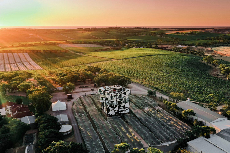 Auf der Fleurieu Peninsula gibt es ebenfalls eine sehr bekannte Weinregion - das McLaren Vale.