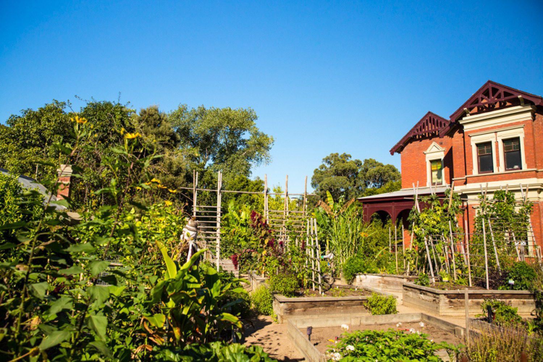 Im Royal Botanic Garden gibt es auch einen Kindergarten, den Sie unbedingt besuchen sollten.