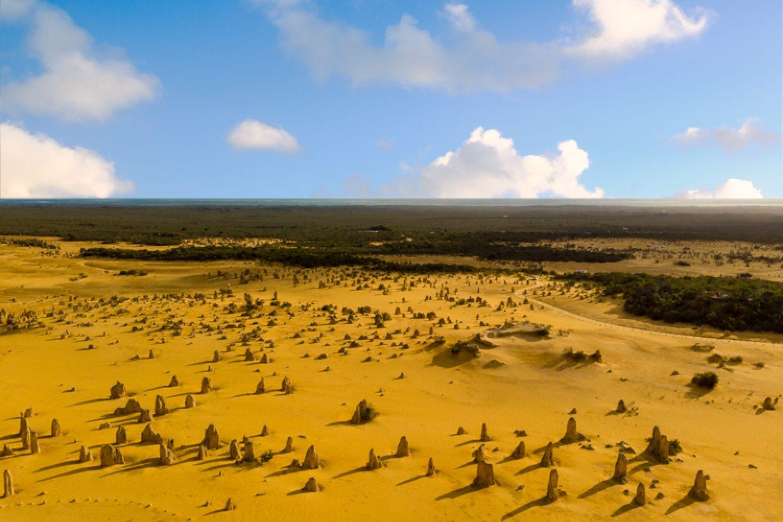 Tausende von Kalksteinsäulen ragen bis zu 3,5 Meter aus dem wandernden, currygelben Sand des Nambung Nationalparks heraus.