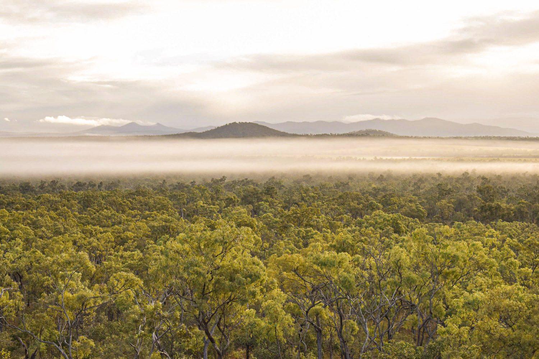 Ihr Ferienhaus ist auf einem Bergkamm gelegen mit Ausblick über das Outback und die Savanne.