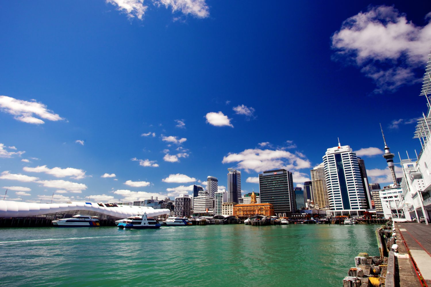 Aucklands Skyline
