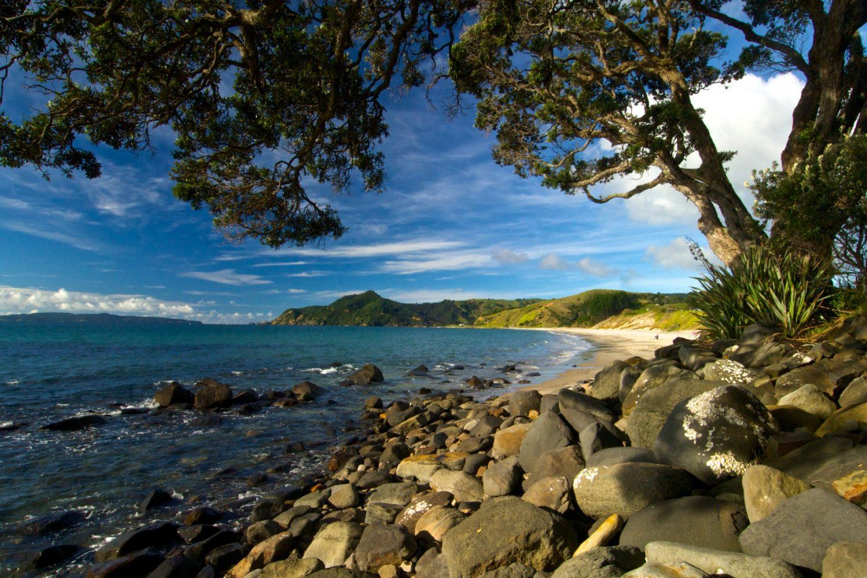 Strand in der Coromandel Region