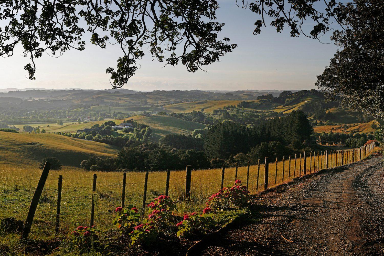 Neuseeland Rundreise Natur und Kultur: Übernachten in der Matakana Sugarloaf Lodge