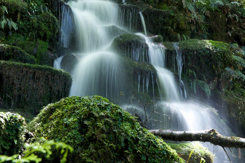 Wasserfälle im Te Urewera Regenwald