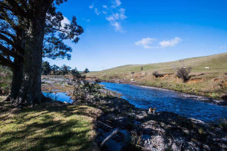 The River Lodge liegt in der ländlichen Idylle bei Ohakune