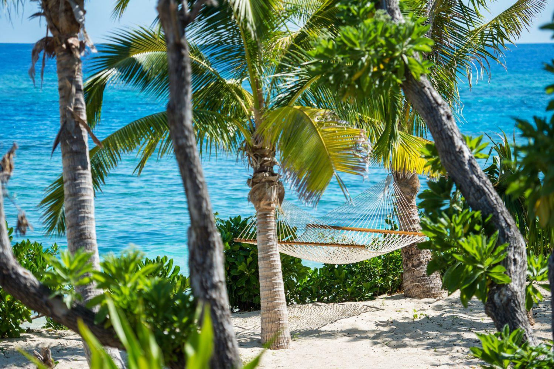 Relaxen in een hangmat onder de palmbomen op Fiji